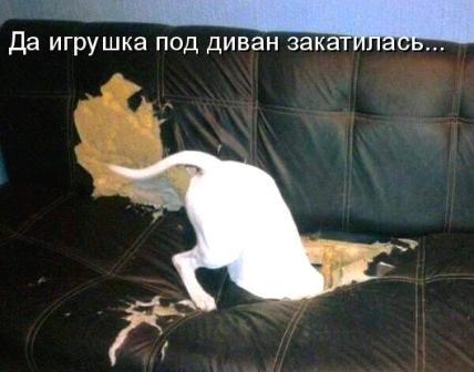 igrushka-poteryalas