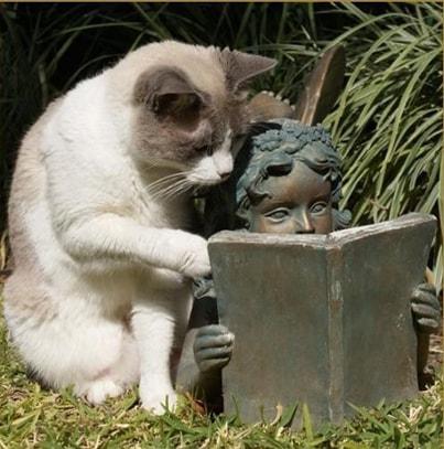 Увлекательное чтение-mini