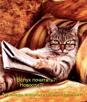 Ученый кот.