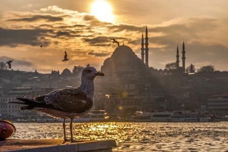 Немного прекрасного Стамбула